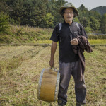 Seonghyun Choi at his natural rice farm after harvest time in Hongcheon, South Korea (photo, P.M. Lydon / Final Straw)