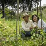 Natural farmers Ieooji Mamoru and Yoko Kakaguchi in Itoshima, Japan (Photo: P.M. Lydon / Final Straw)