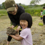 Rice planting by hand in Hongcheon, South Korea (Photo: P.M. Lydon | Final Straw)