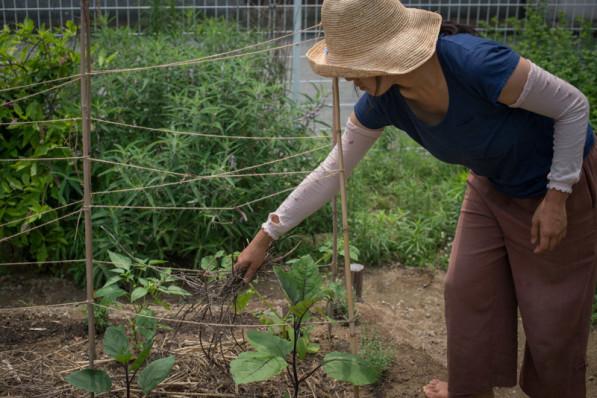 Suhee works in the REALtimeFOOD garden in the Kitakagaya neighborhood of Osaka, Japan