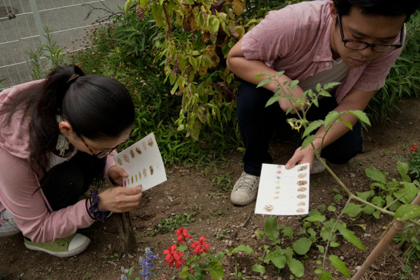 Participants in the Final Straw's Soil Art workshop in Osaka, Japan
