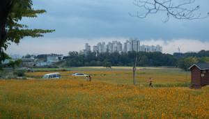 Suwon Citizen's Farm